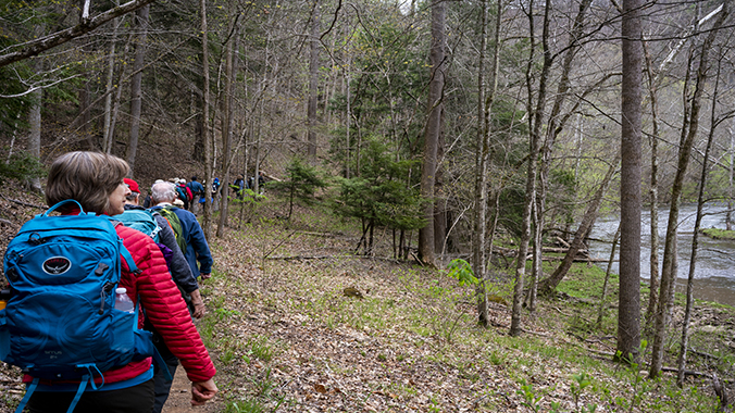 Choose Your Pace: Hiking Scenic Southwest Virginia