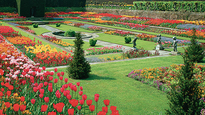 Chelsea Flower Show and Gardens: A British Tradition