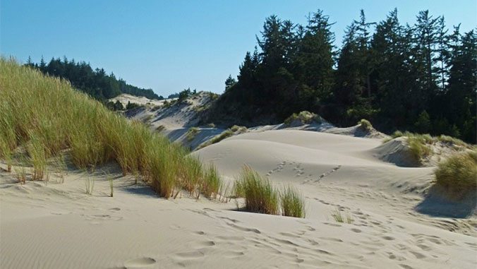 A Hiking Adventure Along Oregon's Central Coast
