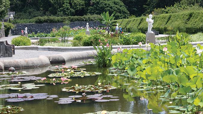 A Gardener\'s Delight: The Private & Public Landscapes of Asheville