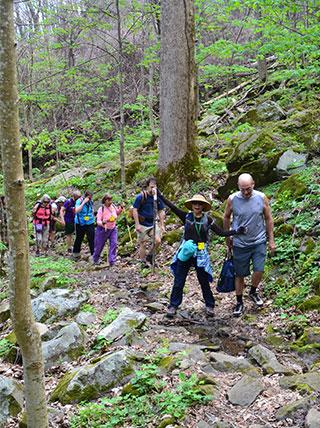 Hiking Southwest Virginia