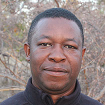 Profile Image of Chris Chiparaushe