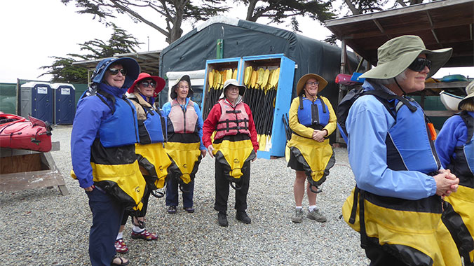 The Best of Monterey's Wildlife: Condors, Sea Otters and Whales
