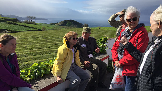 The Amazing Azores: From Volcanos to Vineyards