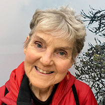 Profile Image of Susan Wolfe