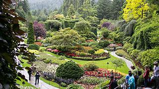 https://roadscholar-iv-prod.azureedge.net/publishedmedia/bo577ns1jxvwf7rgd6qp/2679-victoria-vancouver-glorious-west-coast-gardens-butchart-garden-smhoz.jpg