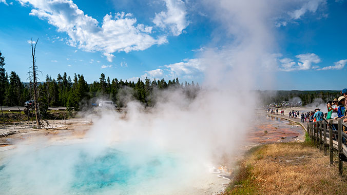 Wildlife and Geysers in Yellowstone with Your Younger Grandchild