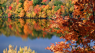 https://roadscholar-iv-prod.azureedge.net/publishedmedia/d73v9t6mjx08ehwwsvvb/20031-NewEngland-AutumnFoliage-smhoz.jpg