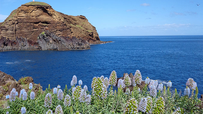 Winter in Madeira: The Island of Eternal Sunshine