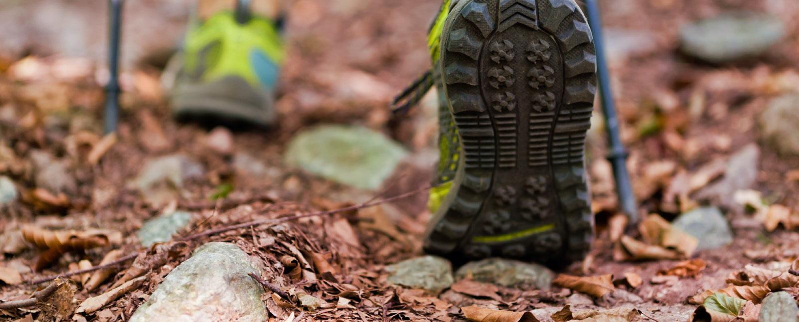 0c548ef8cf0 Expert-led Hiking & Walking Tours   Road Scholar