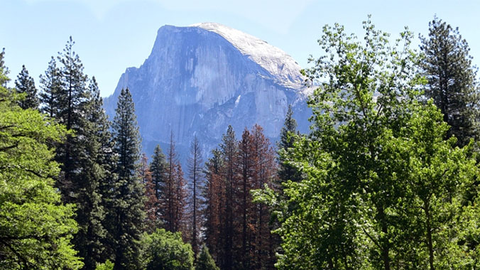 Yosemite and Sierra Nevada National Parks, California