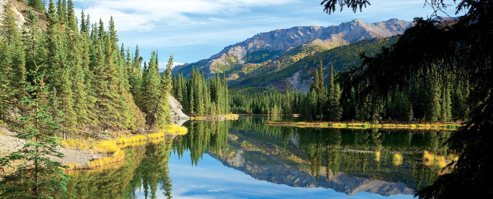 National Park Tours In Alaska Road Scholar