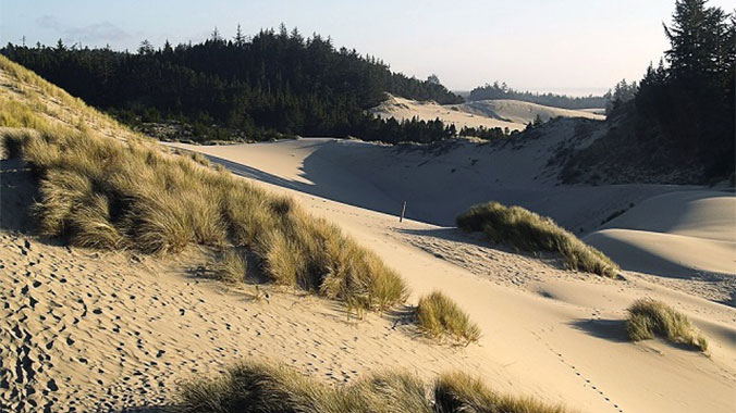 On the Road: The Oregon Coast, California Redwoods & Crater Lake