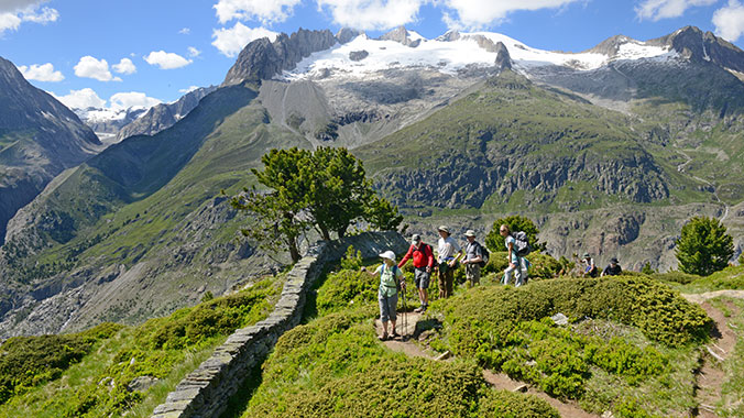Walking Switzerland:  From the Jungfrau to the Matterhorn