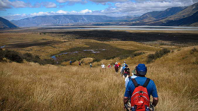 Sunday Afternoon Walk In Owen Park >> Walking Tours In New Zealand Road Scholar