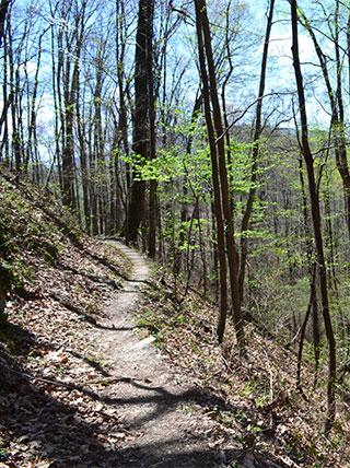 North Carolina Great Smoky Mountains