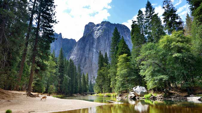 Women's Only: The Best of Yosemite National Park: An American Icon