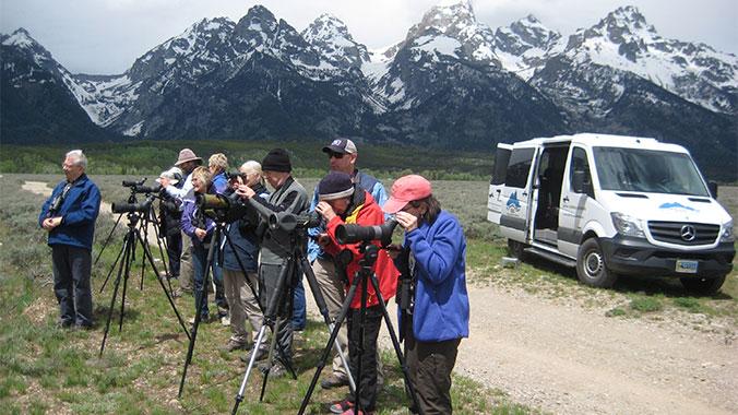 Birding in the Tetons