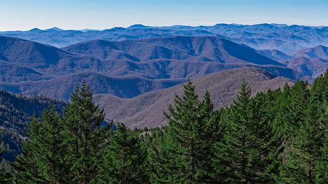 Switchback and Summits: Hiking and Nature in North Carolina