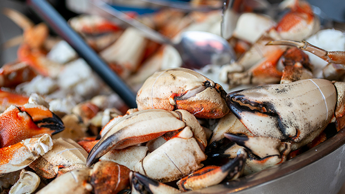 Coastal Catch: A Culinary Adventure Along Oregon's Beautiful Coast