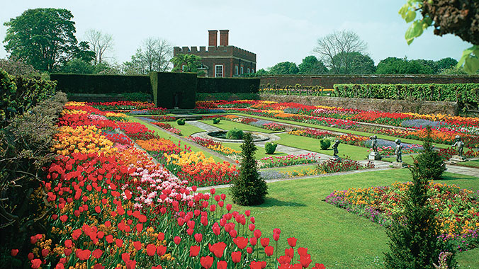 Roses In Garden: Britain's Beautiful Blooms At The Hampton Court Flower Show