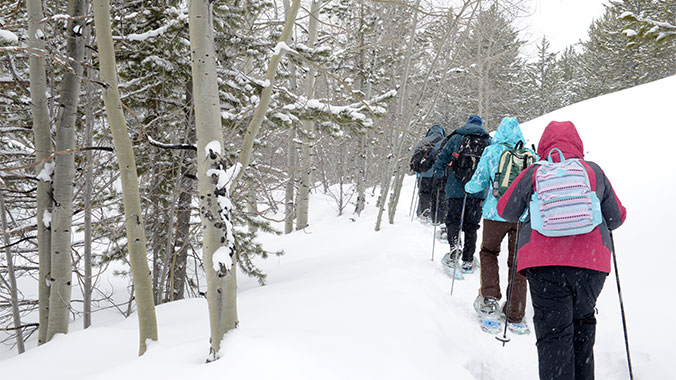 Cross Country Skiing in the Adirondacks