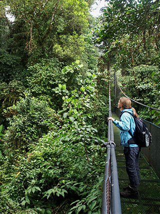 From Cloud Forests to Volcanoes: Costa Rica With Your Family