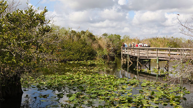 Secrets of Southeast Florida