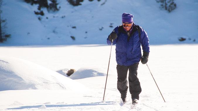 Minnesota in Winter: Snowy Hikes & Boreal Birding in Sax Zim Bog